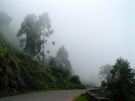 Bangalore Monsoon weekend getaways, Munaar