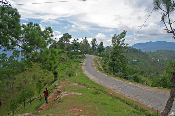 Delhi Weekend Getaways, Binsar