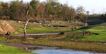 Pench National Park and Tiger Reserve