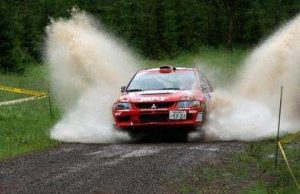 Top 6 Rally Cars of India
