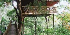 Treehouse hotels in India