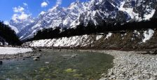 best_time_to_visit_Yumthang-Valley.jpg
