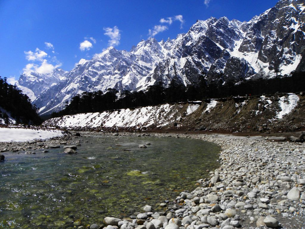 Best Time To Visit Yumthang Valley Indiamarks