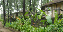 resort_exotica-beach-resort_in_diveagar_705.png