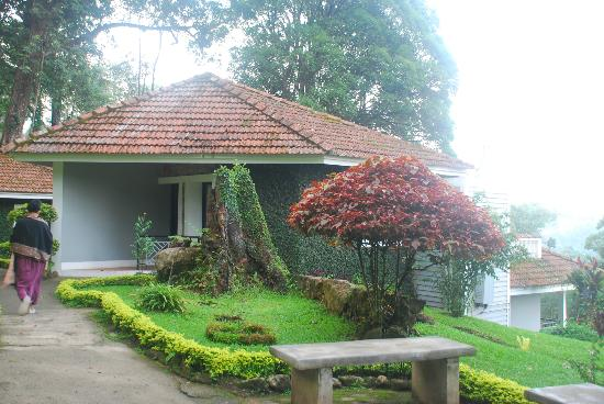 The Tall Trees Resorts
