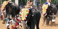 when_is_Arattupuzha-Pooram_in_2015.jpg